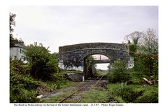Ballinasloe Canal. Bord na Mona railway on the canal bed. 23.5.87 (Roger Joanes) Tags: ireland bordnamona ballinasloe