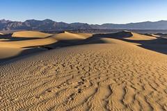 *a morning in the desert* (albert.wirtz) Tags: dune sanddune desert mesquiteflatsanddunes deathvalley albertwirtz usa unitedstates vereinigtestaaten nationalpark deathvalleynp deathvalleynationalpark waves wellen bluesky blauerhimmel morning morgen morninglight lightshadow spurenimsand california kalifornien landscape desertedlandscape badlands desolatelandscape wüste nikon d810 stovepipewells