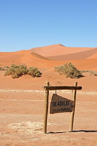 DSC02914 - Namibia 2010 Sossusvlei