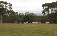 Mountain View Mount Hope Road, Coolah NSW
