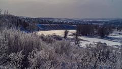 Frost (kensparksphoto) Tags: bowriver calgary canada canonfd50mmf35macro alberta fishcreekpark hoar frost legacyglass manualfocus
