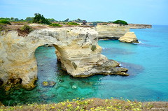 ° Sant'Andrea (° Ivan) Tags: santandrea melendugno lecce apulia puglia salento italy italia sea stack beach beautiful nature bikes adriatic mediterranean flowers yellow blue green landscape