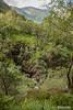 Turning east to south-beginning of Nevis Gorge. (Scotland by NJC.) Tags: glennevis scotland gorge valley ravine canyon chasm desfiladeiro 峡谷 garganta schlucht gola 협곡 river stream waterway tributary brook canal watercourse creek beck burn نَهْر rio 河流 rijeka řeka flod rivier joki fleuve fluss fiume 강 흐르는 물 elv trees foliage vegetation arboretum شَجَرَة árvore 树 drvo strom træ boom árbol puu arbre baum δέντρο albero 木 나무 tre drzewo copac дерево