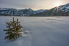 Frozen Sunrise at Molas Pass (Matt Payne Photography) Tags: sanjuanmountains morning loxia21 silverton landscape winter durango sonya7r2 subzero mountains sunstar sunrise cold molaspass colorado snow