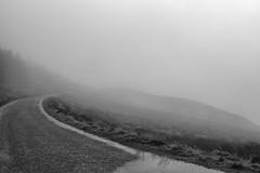 ... journey ... (jane64pics) Tags: land landscape wicklow cowicklow sallygap dogwood2017 dogwood52 dogwood52week3 janefriel2017 janefriel bw fog misty mist road trees treeline water gcc greystonescameraclub