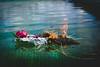 Ellanore011617-16 (MegzyTred) Tags: megzytred beta betafish viking funeral vikingfuneral fishfuneral deadfish goodparenting doingmybest kidsareweird lifeisstrange majesticfishfuneral majestic fish flames fire tinfoil foil boat water cremation burial burialatsea