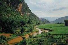 River and Rice Paddies, Sơn La Vietnam (AdamCohn) Tags: 117kmtobnthminsnlavietnam adamcohn bnthm snla sơnla vietnam geo:lat=21425317 geo:lon=103725953 geotagged hills karst mountain mountains ricepaddy river wwwadamcohncom phổnglăng