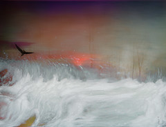 #Passages (graceindirain) Tags: fly bird moved water montage digitalpainting digital photomanipulation texturework textured graceindirain