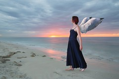 228/365 (Jessie Rose Photography) Tags: sunset angel photosho photomanipulation wings winged 365 selfportrait