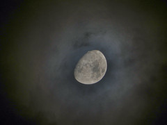 DSCN0804 (2di7 & titanio44) Tags: nikon p500 moon
