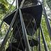 Panama Rainforest Discovery Center gamboa panama pandemonio 2017 - 11
