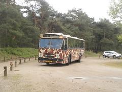 Lijn 11 Safaripark Beekse Bergen (RaAr2010) Tags: beeksebergen hilvarenbeek bussen bus openbaarvervoer ov denoudsten denoudstenbussen