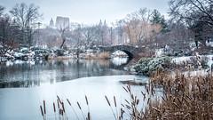 Gapstow Bridge, Central Park NYC (Gjorcheski) Tags: newyork newyorkcity nyc manhattan centralpark winter nycwinter centralparkwinter manhattanwinter park bridge snow gapstowbridge lake thepond centralparklagoon background travel vacation landscape