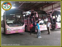 Welcome to Pink Paradise (BBOP.Official) Tags: bus laoag bbop gvflorida provincialbus