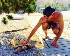 IMG_7020 (danimaniacs) Tags: shirtless man hot sexy guy hat beard turtle tortoise hunk cap trunks swimsuit stud scruff