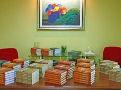 Literatura sobre o tema distribuída aos convidados