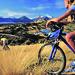 Wyuna mountainbikers