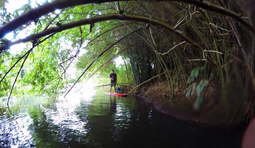 2015 Kauai Paddle Adventure  (8)