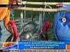 NTG: Dolphin at bagong silang nitong anak, namatay matapos humampas sa malalaking bato (thenewsvideos) Tags: dolphin ntg anak silang bagong nitong matapos malalaking namatay batoquot humampas