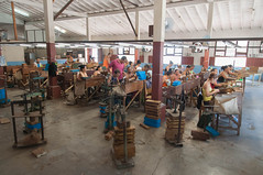 Tobacco factory (Tanya Yakovchuk) Tags: old industry table leaf factory handmade smoke traditional havana cuba working craft cigar crop latin cutting production caribbean produce tradition cuban habana product tobacco pleasure rolling export manufacture cohiba manufacturing