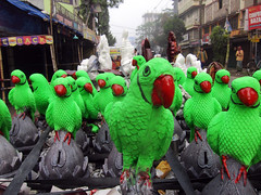 Go green (Rajib Singha) Tags: street travel india green bird art interestingness westbengal hooghly flickriver sheoraphuli canonpowershots90