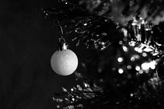 Lone Bauble~ (Dove - Photography) Tags: bauble christmas photography christmastree tree blackandwhite awesomeness kungfupanda doomdoomdeedoomdoom shadandododoomdoom