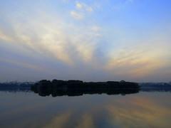 IMG_3028 (mohandep) Tags: birding lake bangalore madivala karnataka nature wildlife t