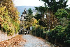 every cell is you (lina zelonka) Tags: marburg hessen germany linazelonka hesse autumn fall herbst house haus lahntal lahnvalley deutschland europe europa 18105mm