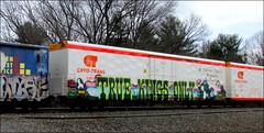 (timetomakethepasta) Tags: wyse tko true kings only yoshi super mario bros freight train graffiti art cryotrans cryx reefer golden west service