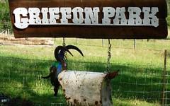 The Sheep Track, Brooman NSW
