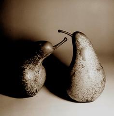 two pears :D (Claudio Taras) Tags: claudio contrasto controluce hasselblad501cm film fomapan 6x6 extensiontube taras toned planar pellicola pears frutti pere still life square rodinal