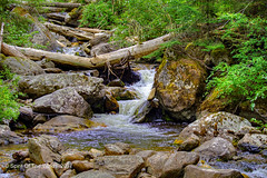 No Name Creek (jimgspokane) Tags: mountains mountainroads forests trees camping idahostate creeks waterfalls