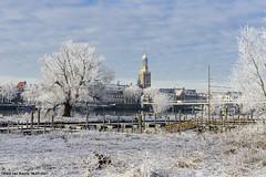 Winterse blik op Kampen, 19-01-2017 (Paul van Baarle) Tags: nederland netherlands holland dutch paybas kampen overijssel ijssel ijsselmuiden winter sneeuw vorst cold kou rijp frost nikon d800