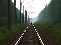 into_the_distance (ЕгорЖуравлёв) Tags: railway railroad topf200