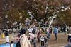 Bubbles (Dominic Sagar) Tags: 2016 fujifilm japan t050 t100 t200 xt1 yoyogi bubbles children park shibuyaku tōkyōto jp