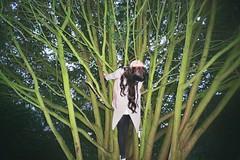 _20_00980 (Lee Sydney) Tags: 35mmfilm 35mmphotography filmisnotdead filmphotography filmisnotdeadinmalaysia 35mmfilmphotography agfavista200 olympusmjuii nannamatilde nanna matilde couchsurfers couchsurfing outgoing outdoor activities cabottower brandonhill treeclimbing monkey human what girl branches tree big huge flash danish girls