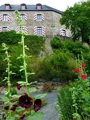 Kastellaun - Burg Kastellaun