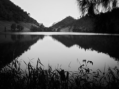 Monochrom reflection (elly.sugab) Tags: water lake blackwhite monochrom reflection bw nature ranukumbolo semeru mountain hiking monochrome blackandwhite