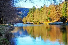 Winter on the Tay (eric robb niven) Tags: ericrobbniven scotland perthshire walking landscape dundee dunkeld rivertay