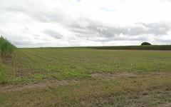 139 Dunnrock Road, Chelona QLD