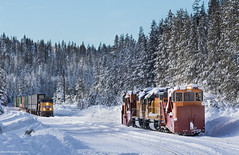 The Race Is On! (Jake Miille) Tags: unionpacific trains railroad freighttrain intermodal stacktrain spreaders jordanspreaders snowequipment snowfighters sodaspringscalifornia donnerpass donnerpassroute uprosevillesubdivision snow scenic meet wtktkf