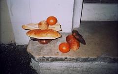 (Mistoska) Tags: streetphotography analogphotography analog rue street fruit naturemorte stilllife marseille southoffrance france french