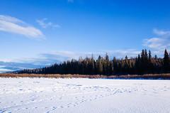 on Seeley Lake (ulanalee) Tags: ricohgrii ricohgr ricoh ricohgr2 montana seeleylake lake winter snow forest nature icefishing