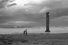 time for walk (pepe amestoy) Tags: blackandwhite landscape elcampello spain fujifilm xe1 carl zeiss t planar 250 zm leica m mount