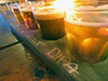 short visit to Persephone Brewing Company.. (iwona_kellie) Tags: gibsons britishcolumbia canada chris conor visit friends persephonebrewingcompany beer food january 2017