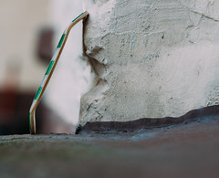 Bonk - Splitply Fingerboard Deck (MartinBeckmann) Tags: tech deck fingerboard blackriver ramps flatface bonk fingerboarding usa mardi grass mardigrass springbreak spring break housten bosten celtics green amish golden ireland irland deutschland skateboard miniatur eisenbahn zirkus