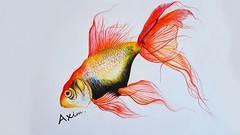 20150829_1344hhh58 (azimabdulla20) Tags: fish art gold axim abdulla azim