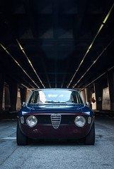 1966 Alfa Romeo GTV - graphic appeal (nathan_leland) Tags: forsale 1966 gtv alfaromeo veloce stepnose