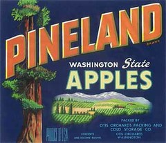 """Pineland Blue • <a style=""""font-size:0.8em;"""" href=""""http://www.flickr.com/photos/136320455@N08/21445501856/"""" target=""""_blank"""">View on Flickr</a>"""