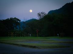 PhoTones Works #7130 (TAKUMA KIMURA) Tags: mountain tree nature landscape scenery pentax     kimura  takuma   645d photones